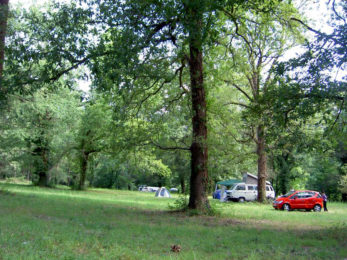 camping-mobil-home-foret